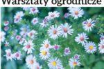 Zapisz się na bezpłatne warsztaty ogrodnicze!