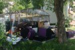 Nieterminowy odbiór odpadów - odpowiedź Urzędu Miejskiego